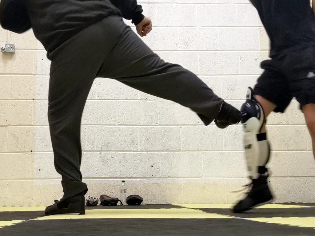 Jeet kune do interception kick to the knee, martial arts training in hull